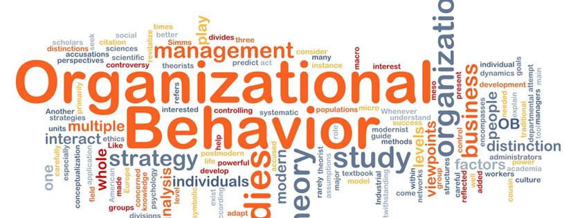 Perilaku Organisasi Adalah: Pengertian, Manfaat, dan Ruang Lingkup Perilaku Organisasi