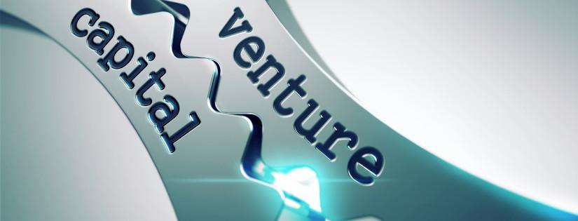 venture capitalist