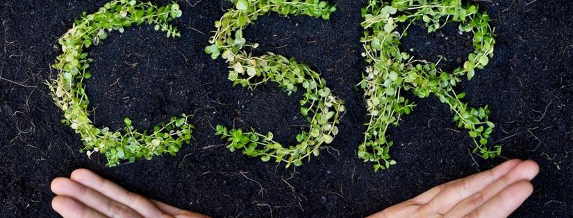 CSR Adalah: pengertian dan jenis-jenis CSR